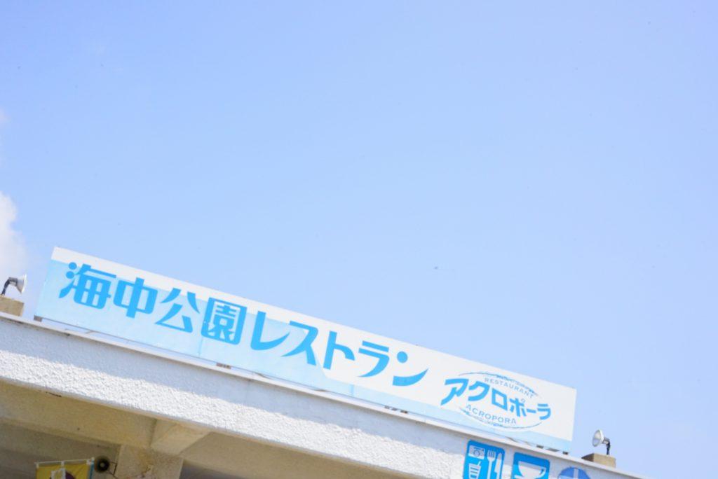 串本 ダイビングパーク シュノーケリング