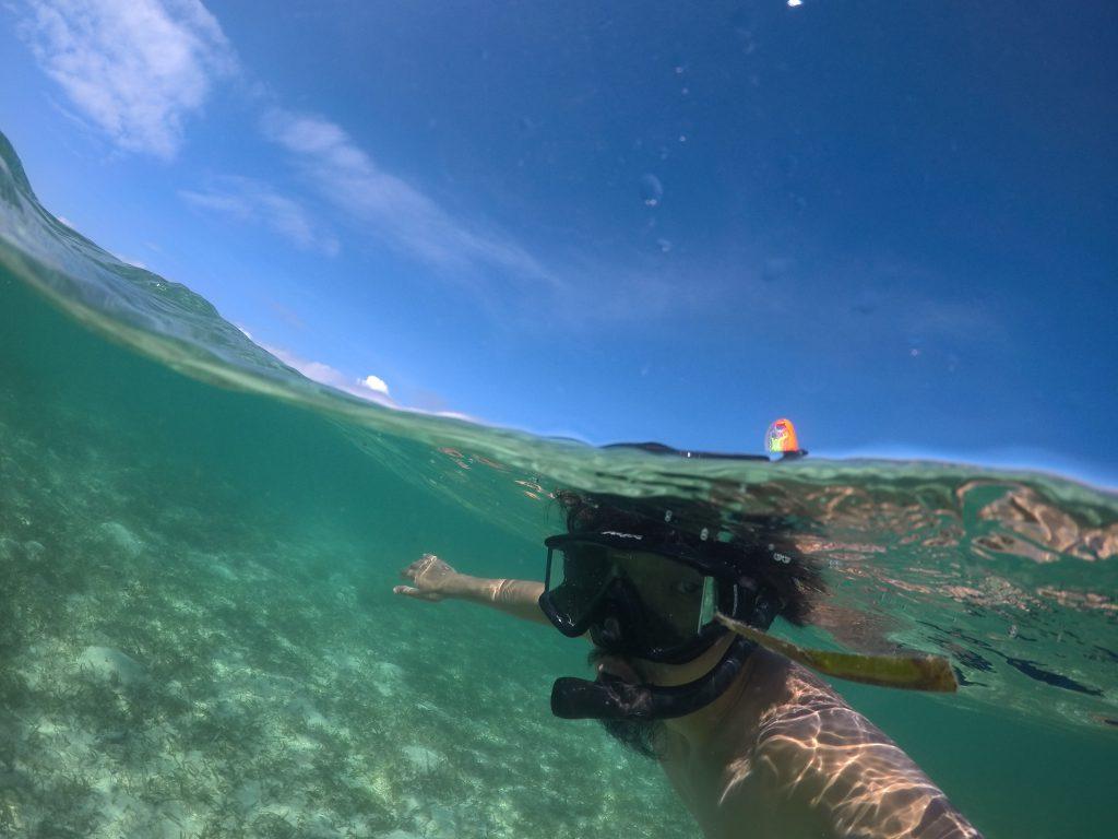 水中と水上を1枚の写真に 人気GoProマウント ドームポート 傷修理 コンパウンド