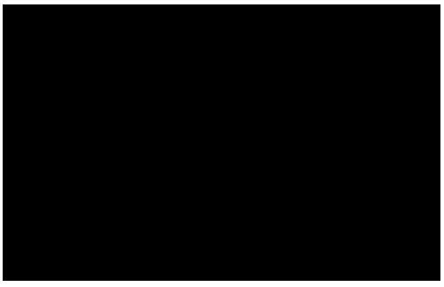 エビス EBIS wave Skimboard 波スキムボード  おすすめブランド オススメ メーカー 選び方