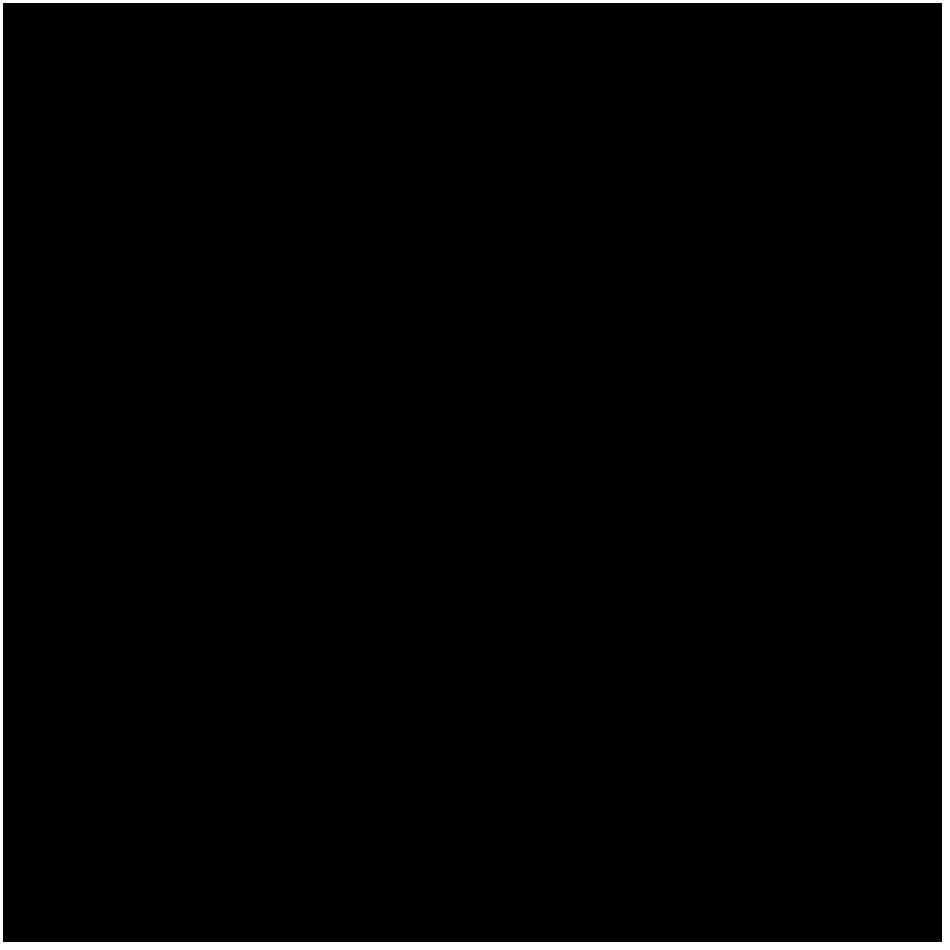 MINI DESIGN ミニデザイン wave Skimboard 波スキムボード  おすすめブランド オススメ メーカー 選び方 国産 マザー MAZAR