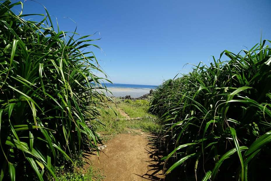 2019年 石垣島 鳩間島 初上陸 八重山諸島 立原浜 ビーチ