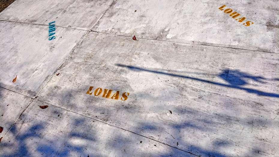 ロハスフェスタ 2019 万博記念公園 コーヒーバスケット LOHAS